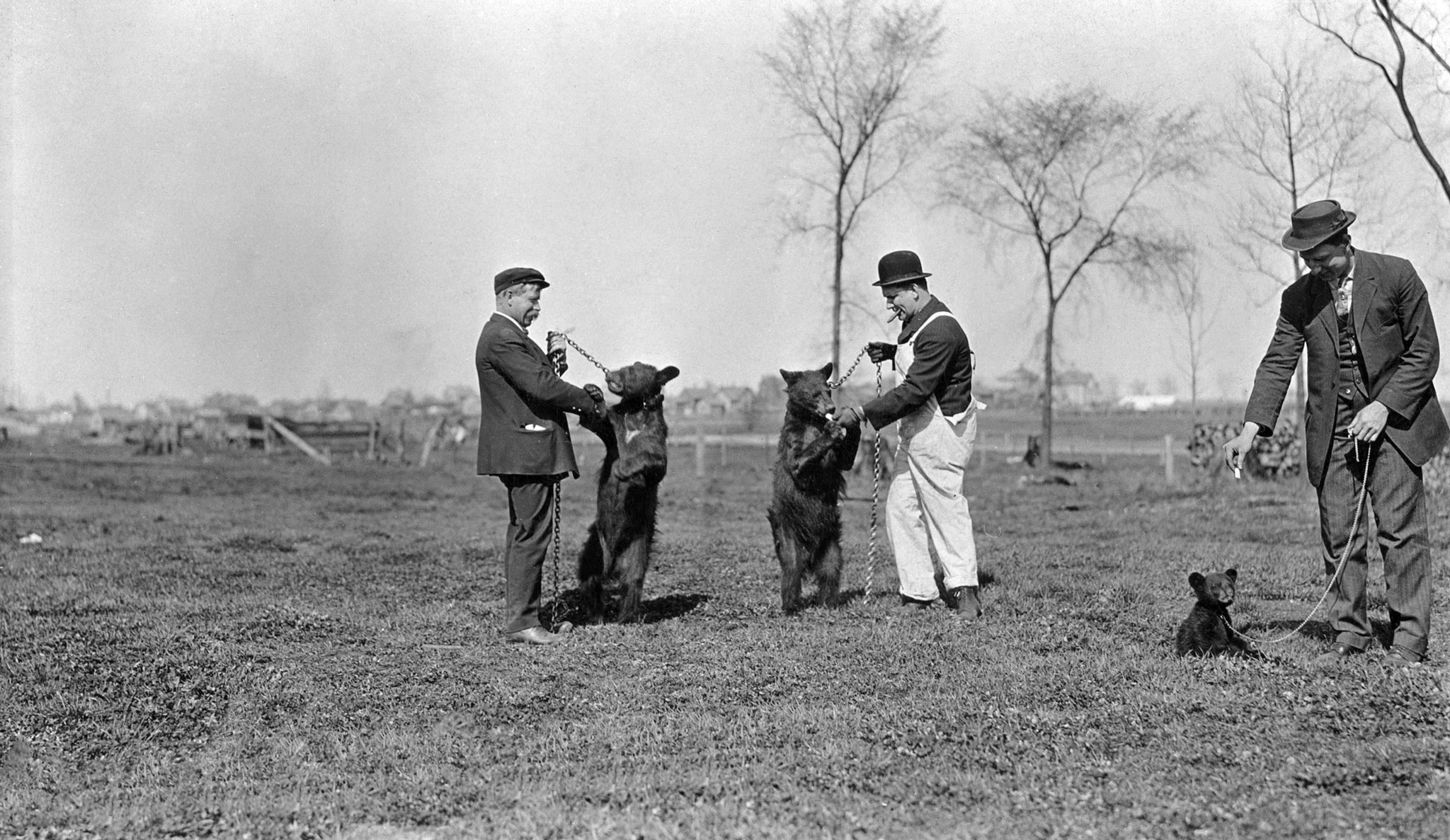 Officer Louis Thomson with two other men playing with leashed bears, circa 1910. These are believed to be the first bear cubs of what would become the Wildwood Zoo. -- Courtesy of the Marshfield History Project