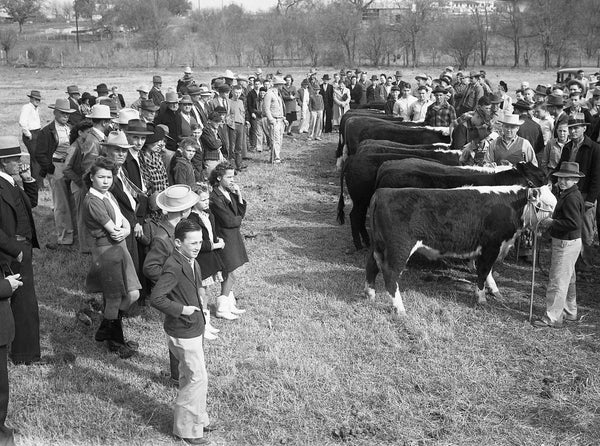 Brazos County Memories: A Photographic History of the Early Years