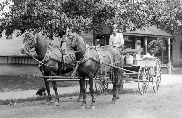 Wayne County Memories: A Pictorial History of the late 1800s through the 1930s