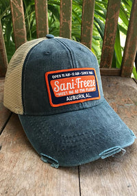 Sani-Freeze Patch Hat - Long Lost Tees