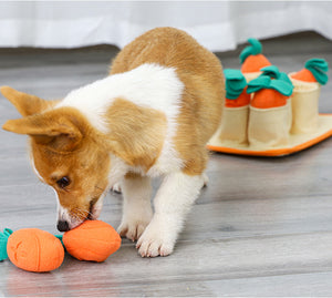 Doglemi Carrot Pot Snuffle Set