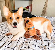 Load image into Gallery viewer, Scooby-Doo Squeaky Plush
