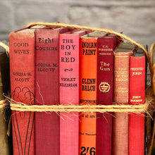 Old Book Bundle - Cherry