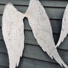 Metal Wings (sold)
