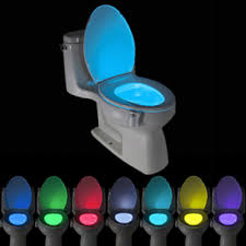 Toilet Motion Sensor Light