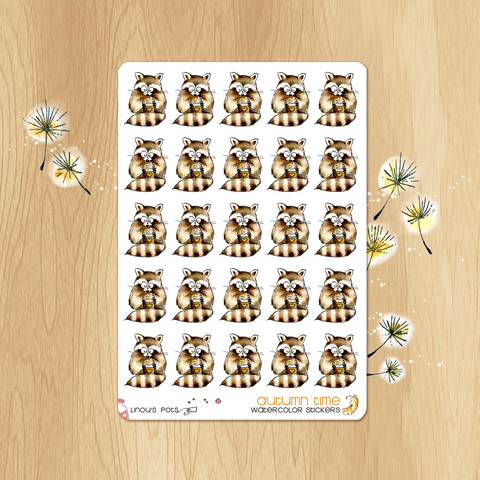 October 2017 Collection - 25 Raccoons with Coffee Latte