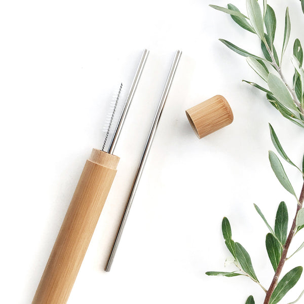 Reusable Straws with Case