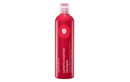 Innisfree Camellia Essential Shampoo 300Ml & Conditioner