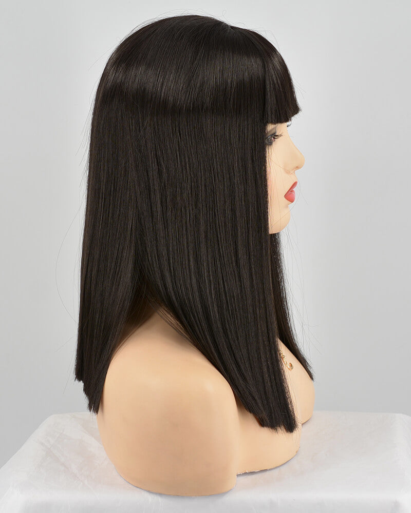 Straight Black Synthetic Lace Front Wig With Bangs WT171