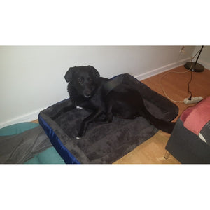 Dog Bed's  Multicolor Soft Waterproof