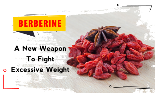 Berberine - A new weapon to fight excessive weight