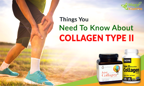 Things you need to know about Collagen Type 2