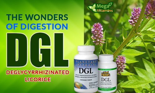 The Wonders of Digestion - DGL