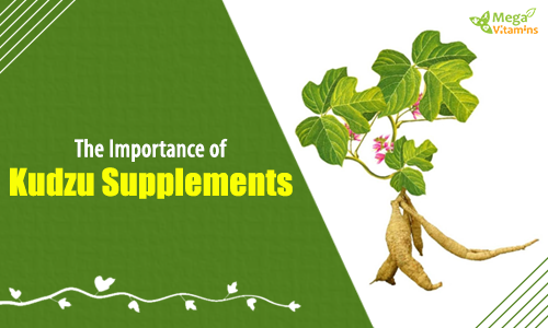 The Importance of Kudzu Supplements