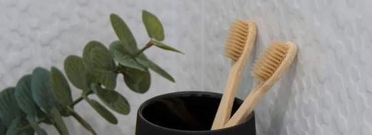 Your Bamboo Toothbrush Questions Answered