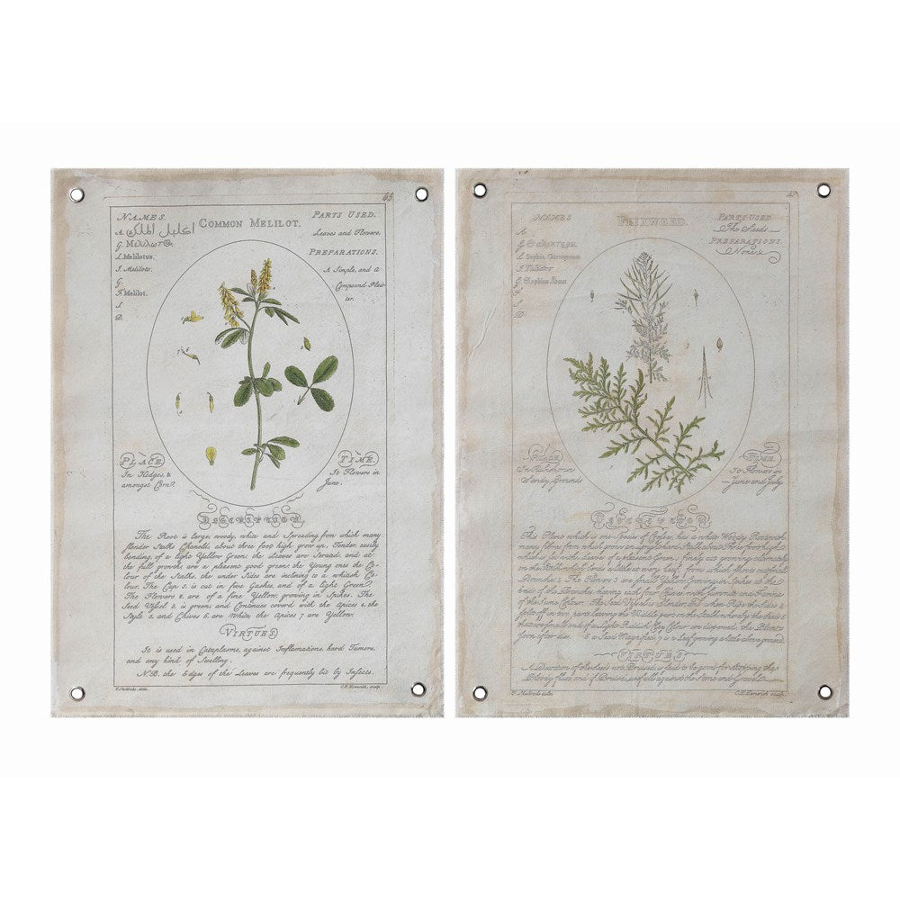 Canvas Wall Decor w/ Vintage Reproduction Botanical w/ Grommets, 2 Styles
