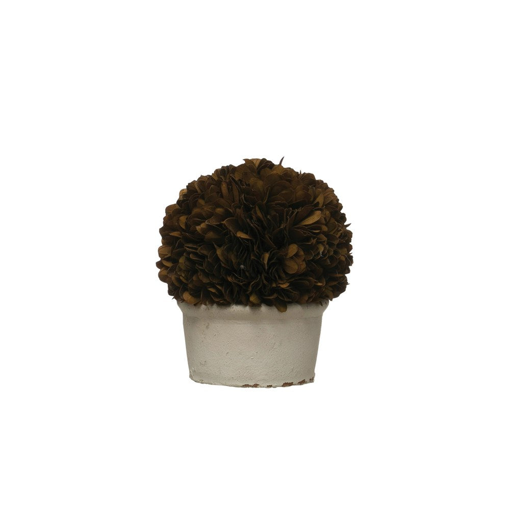 Preserved Boxwood Topiary Single Ball in Clay Pot, Brown