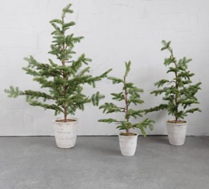 Faux Pine Tree in White Distressed Pot