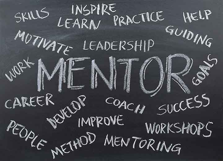 One-on-One Mentorship