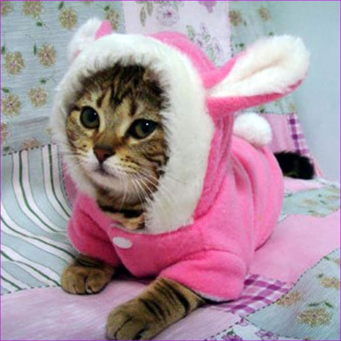Pet Cat Clothes Costume Clothes For Pet Hoodies Cute Rabbit Cat Clothing Puppy Fleece Warm Pet Cat Jacket Outfit 30 H - Cats Cats