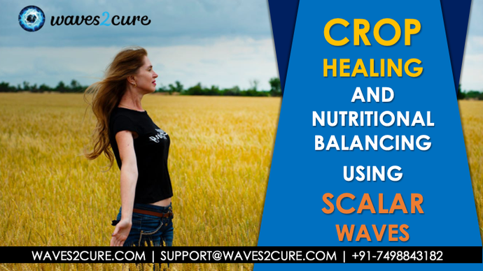 How to Heal Crops and Soil - Nutritional Balancing
