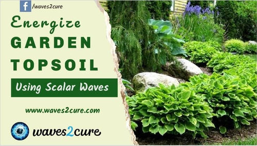 Energize Garden Topsoil Using Scalar Waves
