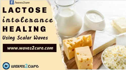 Lactose Intolerance Healing Using Scalar Waves