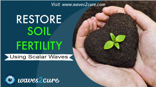 Restore Soil Fertility Using Scalar Waves