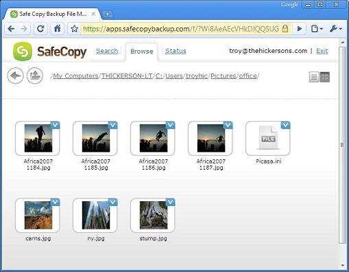 thumbnail view to browse your online backup files
