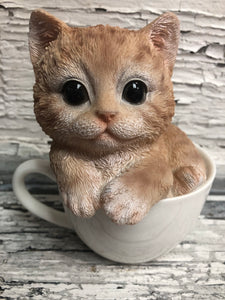 Orange Kitty In A Cup