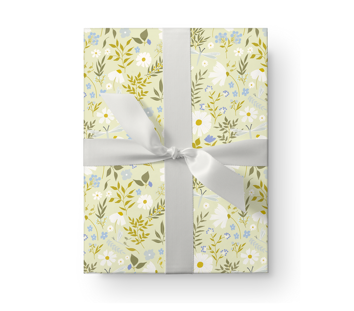 Illustrated wrapping paper gift box with a lovely floral pattern with daisies and dragonflies on a pale green background.
