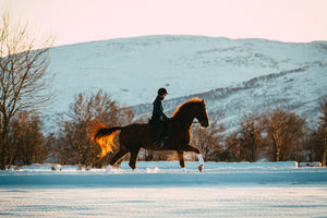 Safety tips for horse riders