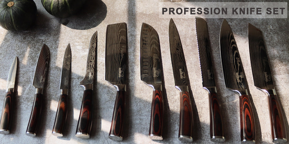 11 PIECE PROFESSIONAL KNIVES SET WITH STEAK KNIFE
