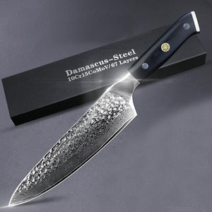 8 Inch Damascus Chef Knife, VG10 67 Layer Damascus Steel - Letcase
