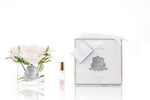 Côte Noire Perfumed Natural Touch 5 Roses in White Box - Pink Blush