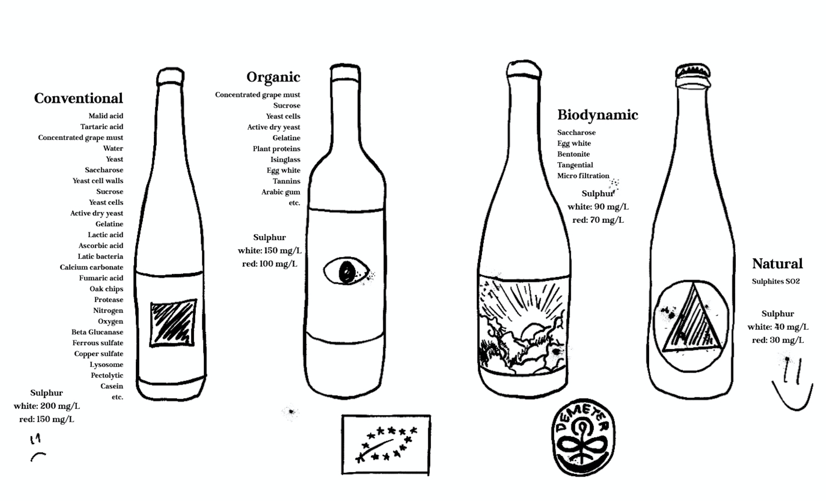 conventional vs organic, biodynamic and natural wine