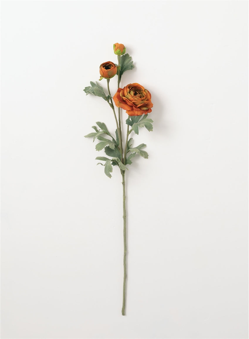 Ranunculus Stem Orange - The Rustic Barn CT