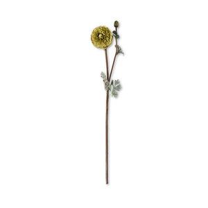 Tan Ranunculus Silk Stem