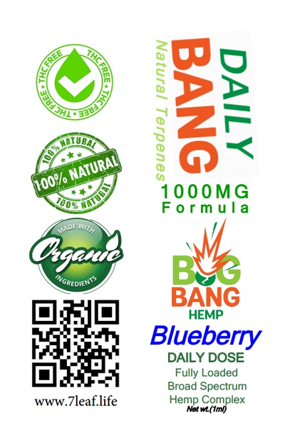 Daily Bang CBD 1000mg Blueberry Syringe - Big Bang Hemp CBD