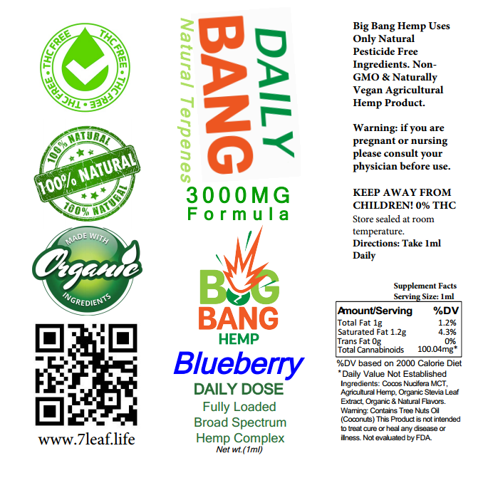 Daily Bang CBD Syringe Blueberry 3000mg- Big Bang Hemp CBD