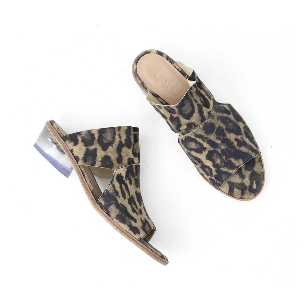 SIZE 36 - THE STARE LEOPARD