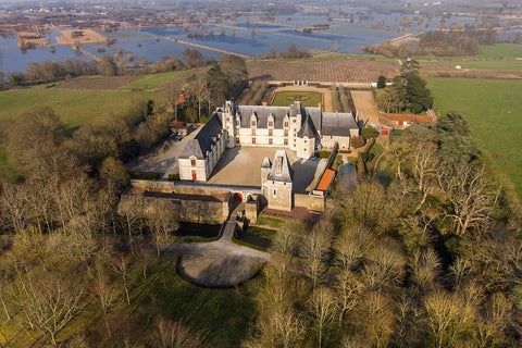 An aerial view of Château de Goulaine in autumn. The Château is at the forefront of the picture surrounded by trees. In the background are the Château's vineyards and flooded fields.