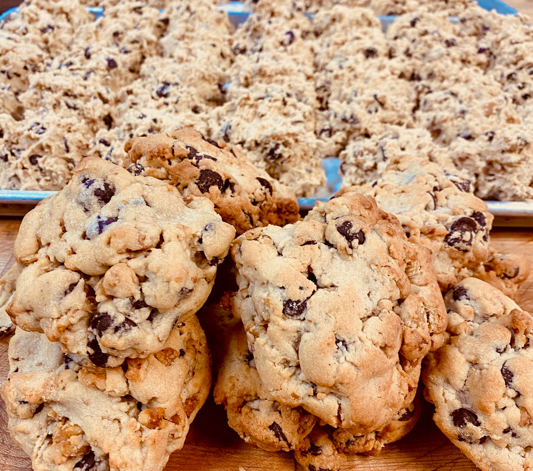 Colossal Chocolate Chip Walnut Cookie (6 oz.)