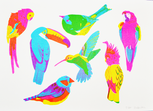 Tropical Birds Risograph Print