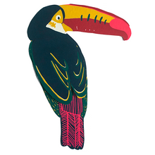 Toucan Greeting Card