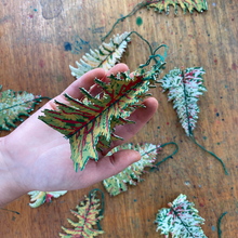 Forest Paper Decorations