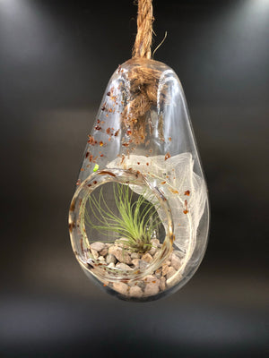 Amber Blown Glass Hanging Terrarium