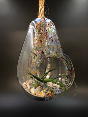 Confetti Blown Glass Hanging Terrarium