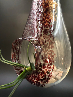 Dark Ruby Blown Glass Hanging Terrarium