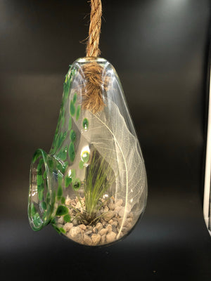 Avocado Green Blown Glass Hanging Terrarium